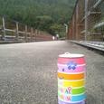 大井川にかかる橋